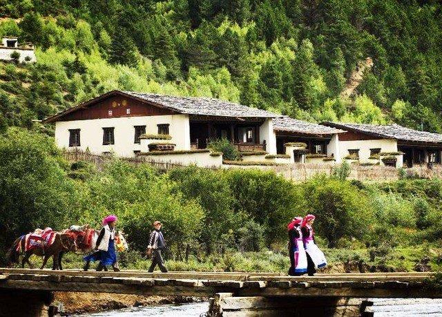 tree Village wooden hut rural area cottage