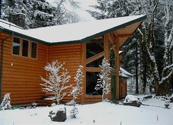 snow tree building skiing house property weather log cabin home Winter cottage sugar house outdoor structure siding roof