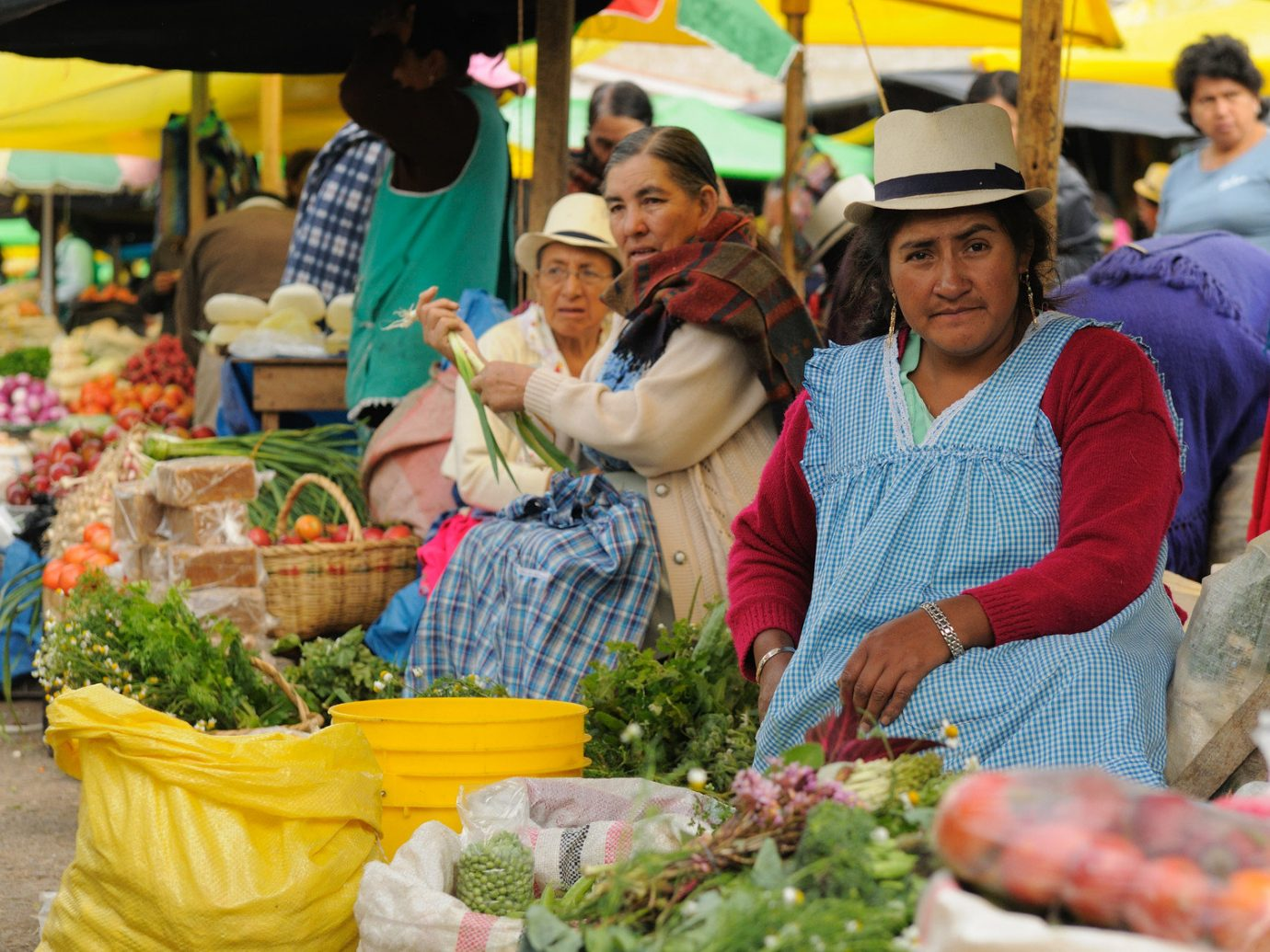 Trip Ideas person marketplace market City public space vendor human settlement food colorful