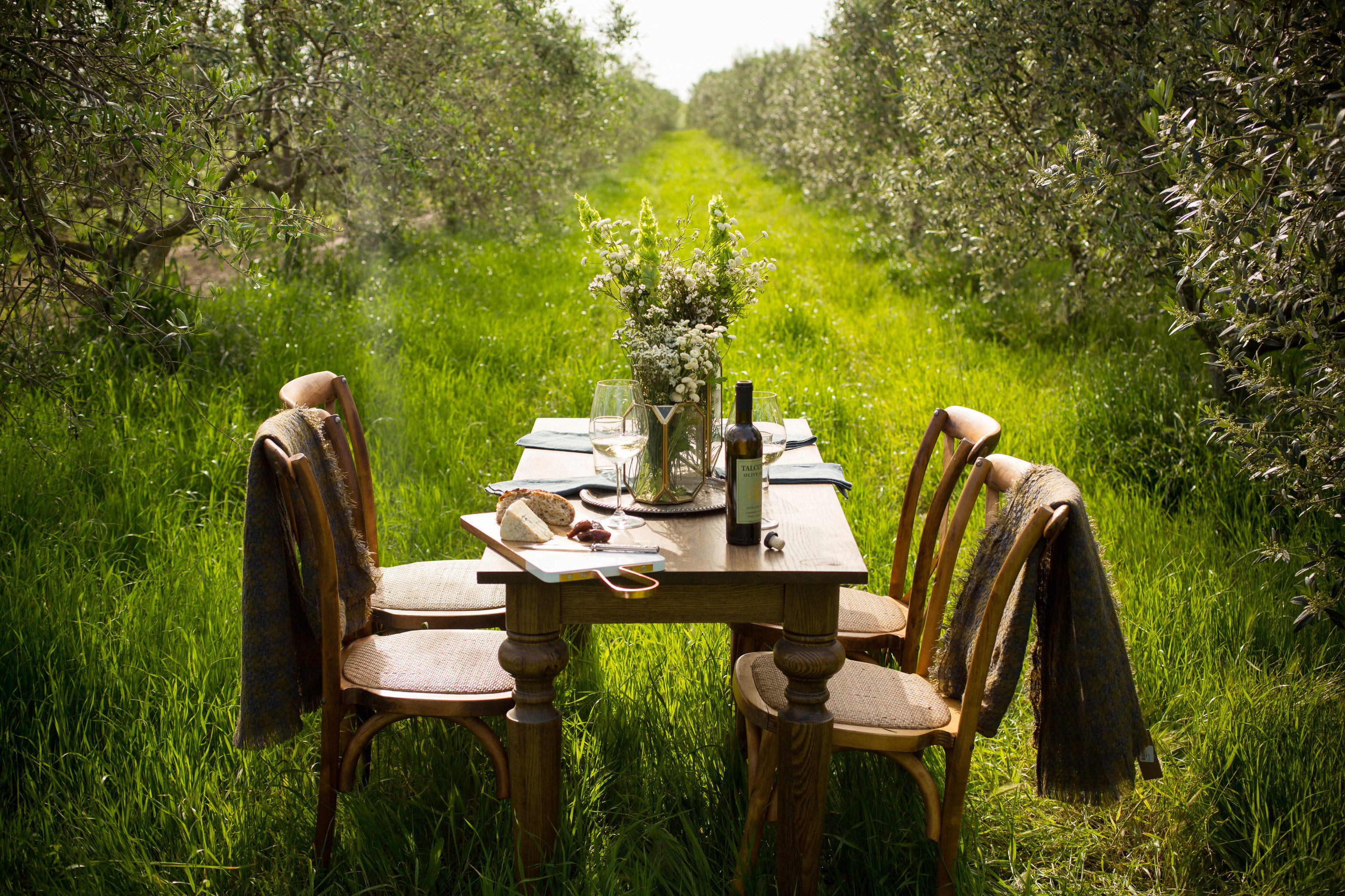 Hotels Trip Ideas tree outdoor green park botany Garden woodland flower backyard Forest plant estate cottage autumn yard furniture surrounded wooded