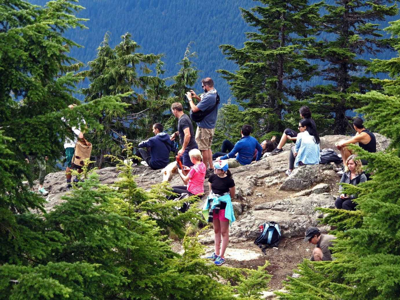 Health + Wellness tree Trip Ideas outdoor conifer people wilderness Forest Adventure outdoor recreation plant walking hiking hill backpacking trail Jungle park wooded hillside wood Garden