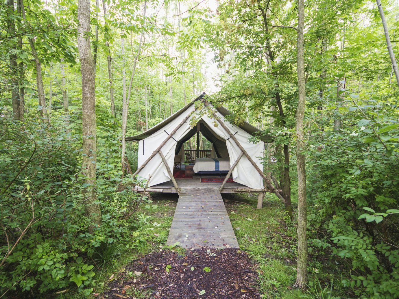 Glamping Luxury Travel Trip Ideas tree outdoor grass nature reserve path Forest vegetation woodland building wood Jungle rainforest old growth forest plant trail real estate cottage hut house state park wooded area lush surrounded Garden stone