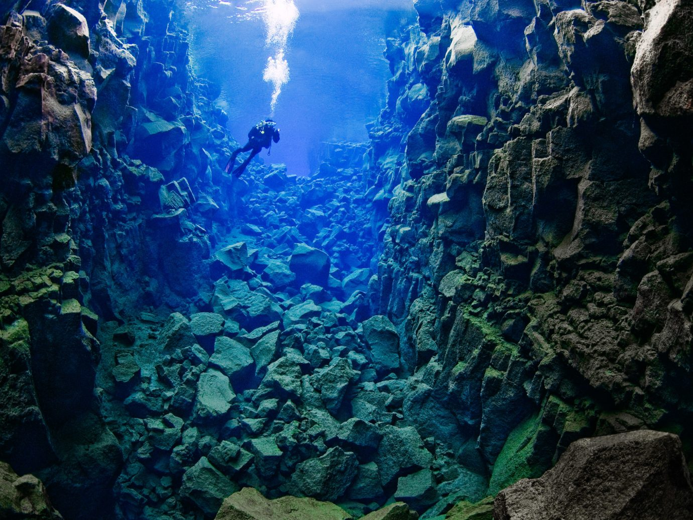 Iceland Travel Tips rock reef outdoor landform marine biology geographical feature Nature coral reef underwater biology mountain coral screenshot formation stone aquarium swimming surrounded ocean floor