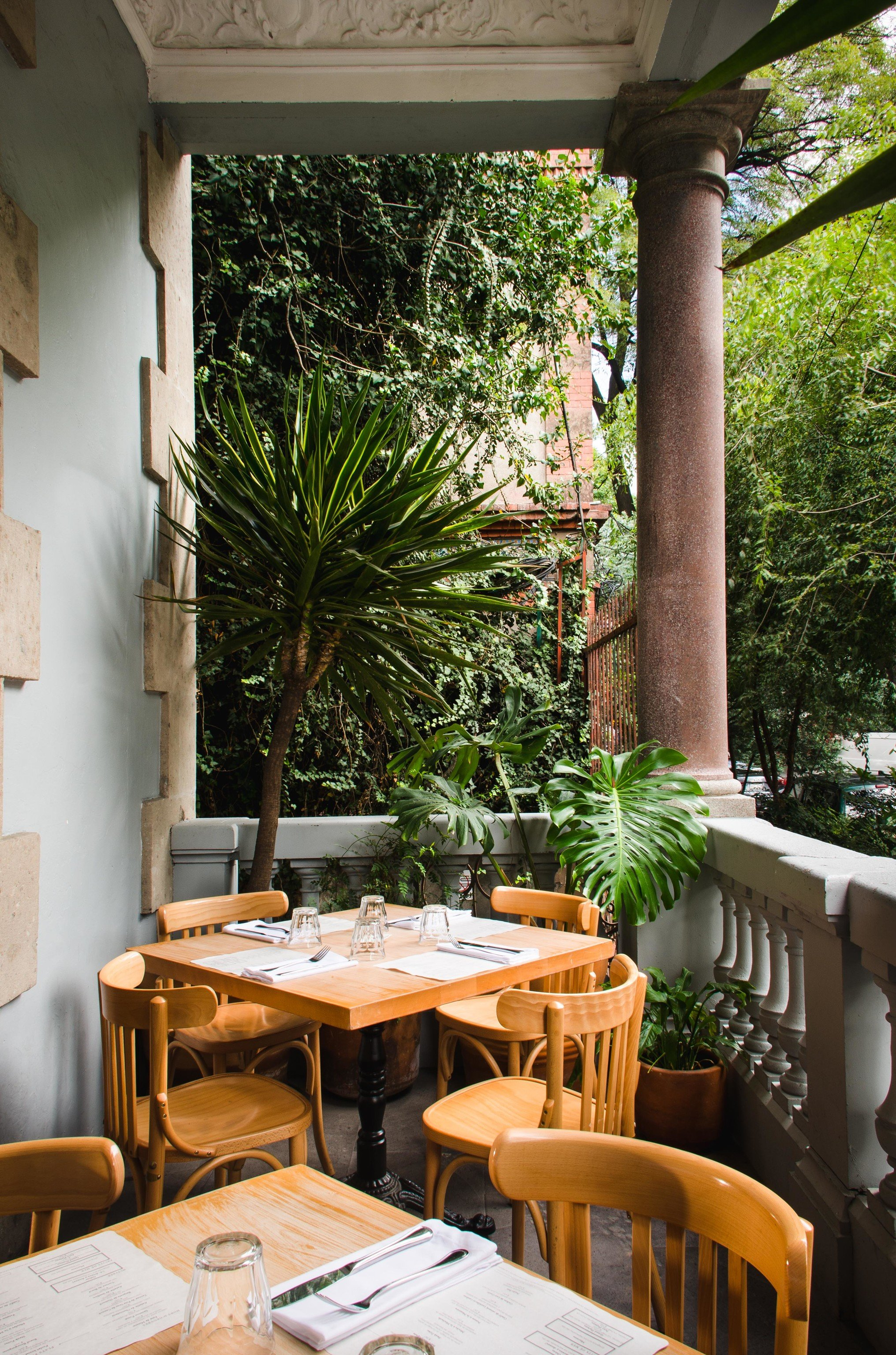 City Mexico City Trip Ideas tree table chair outdoor restaurant home interior design outdoor structure furniture house Patio café window plant porch area