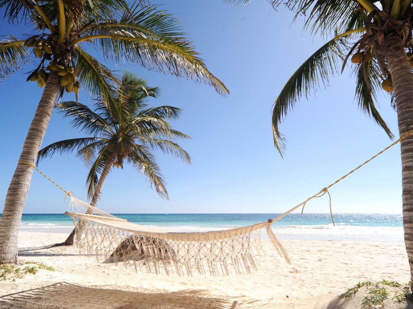 Beach Beachfront Luxury Ocean Trip Ideas Tropical tree sky outdoor palm water plant body of water caribbean vacation Sea palm family shore arecales tropics Coast bay sand cape walkway sandy shade