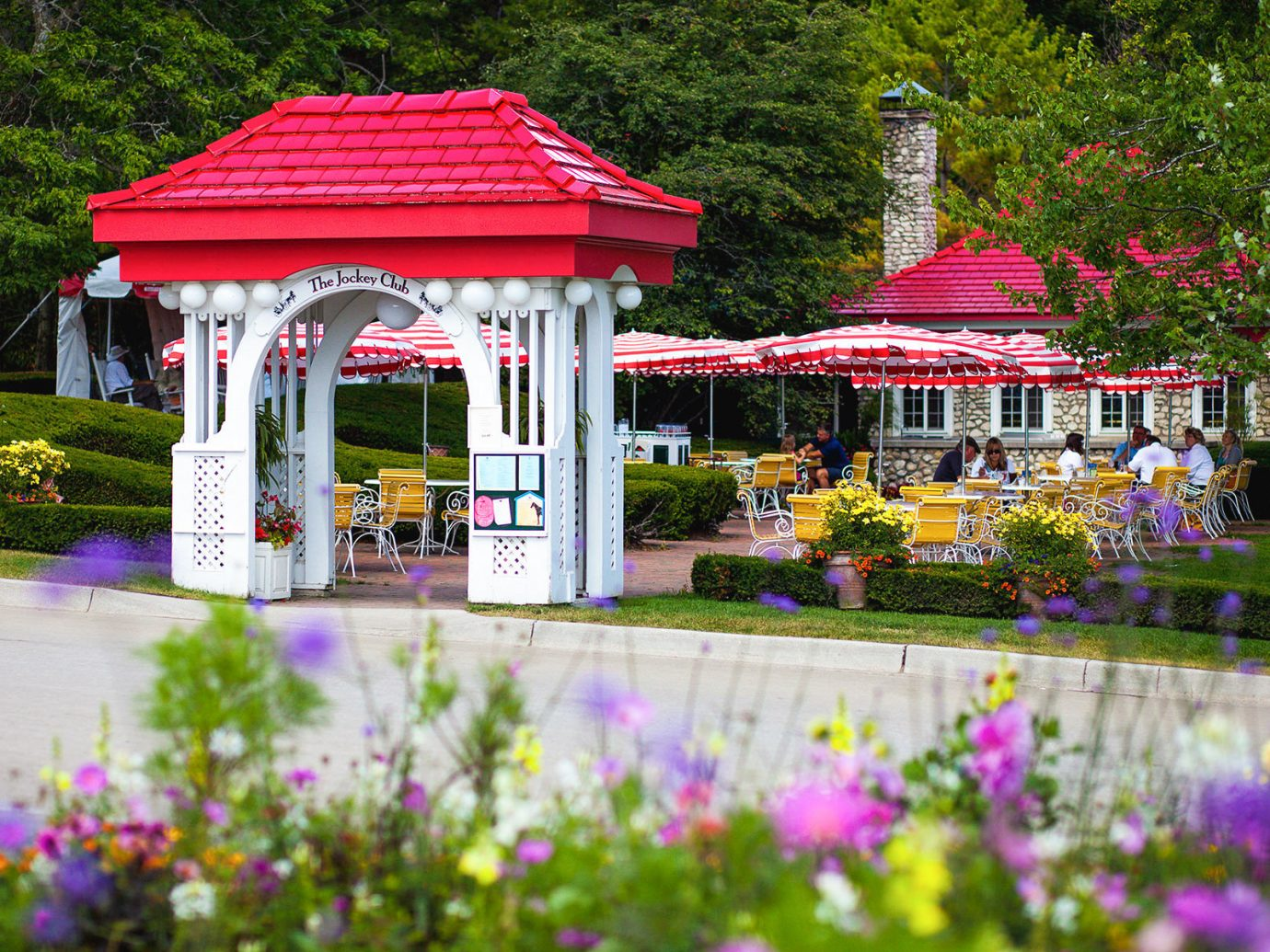flower tree outdoor plant colorful pink gazebo flora Garden red outdoor structure grass botanical garden house landscaping floristry park pavilion flowering plant decorated colored surrounded