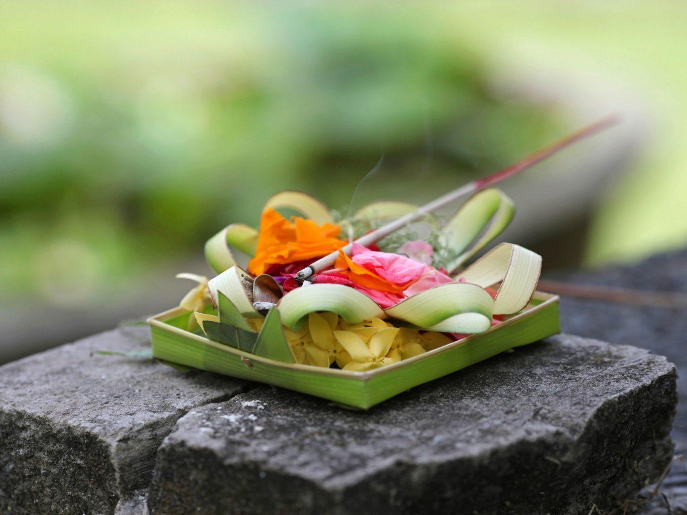 Jetsetter Guides green piece yellow flower food leaf slice cuisine macro photography dessert