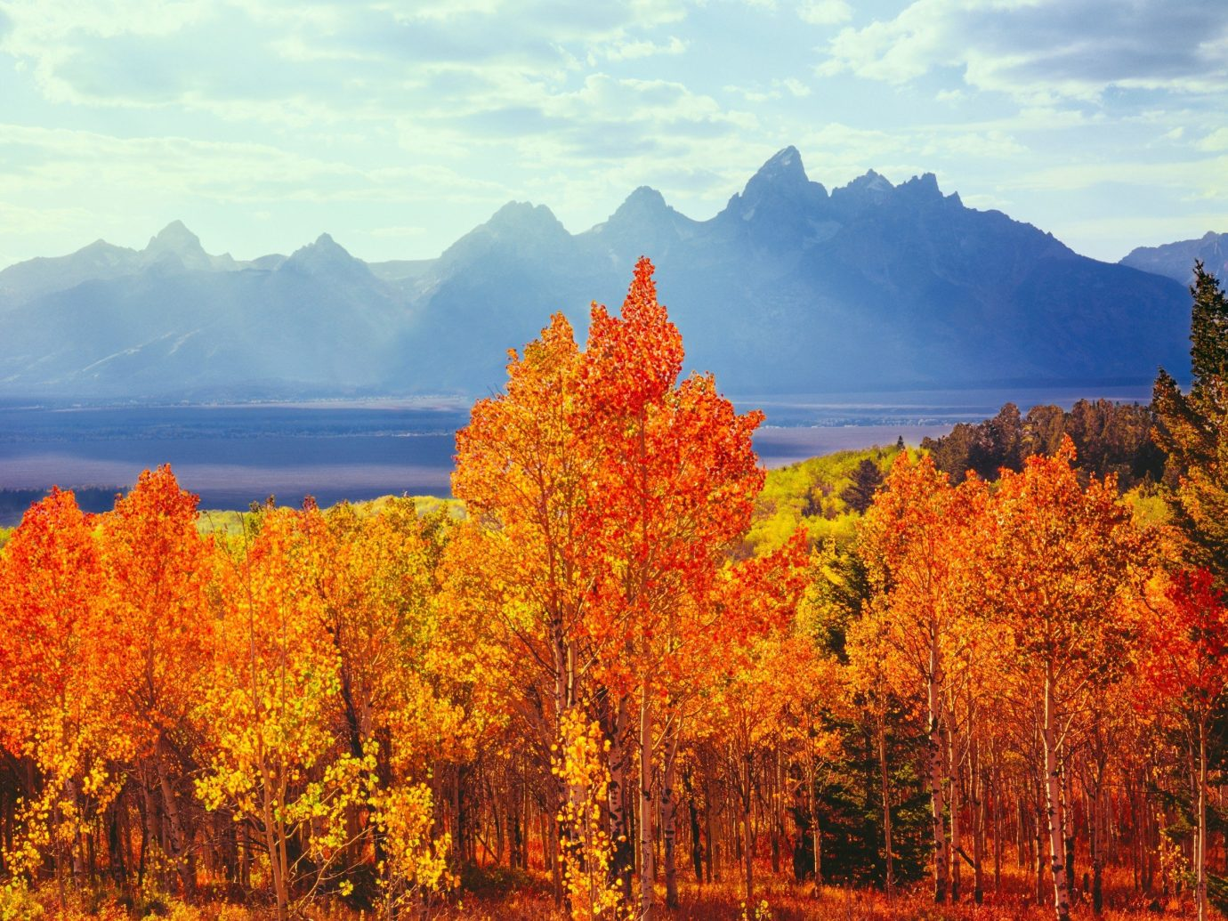 Trip Ideas tree mountain outdoor sky mountainous landforms Nature autumn wilderness season leaf ecosystem background plant poplar morning woody plant landscape flower Lake meadow Forest surrounded distance lush