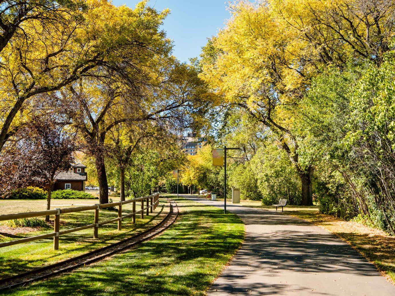 Walking path in Kinsmen Park in Saskatoon Trees curved path