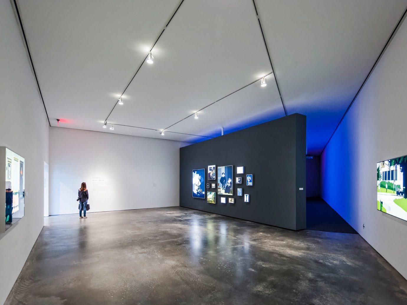 exhibition tourist attraction art gallery museum interior design daylighting space ceiling art exhibition