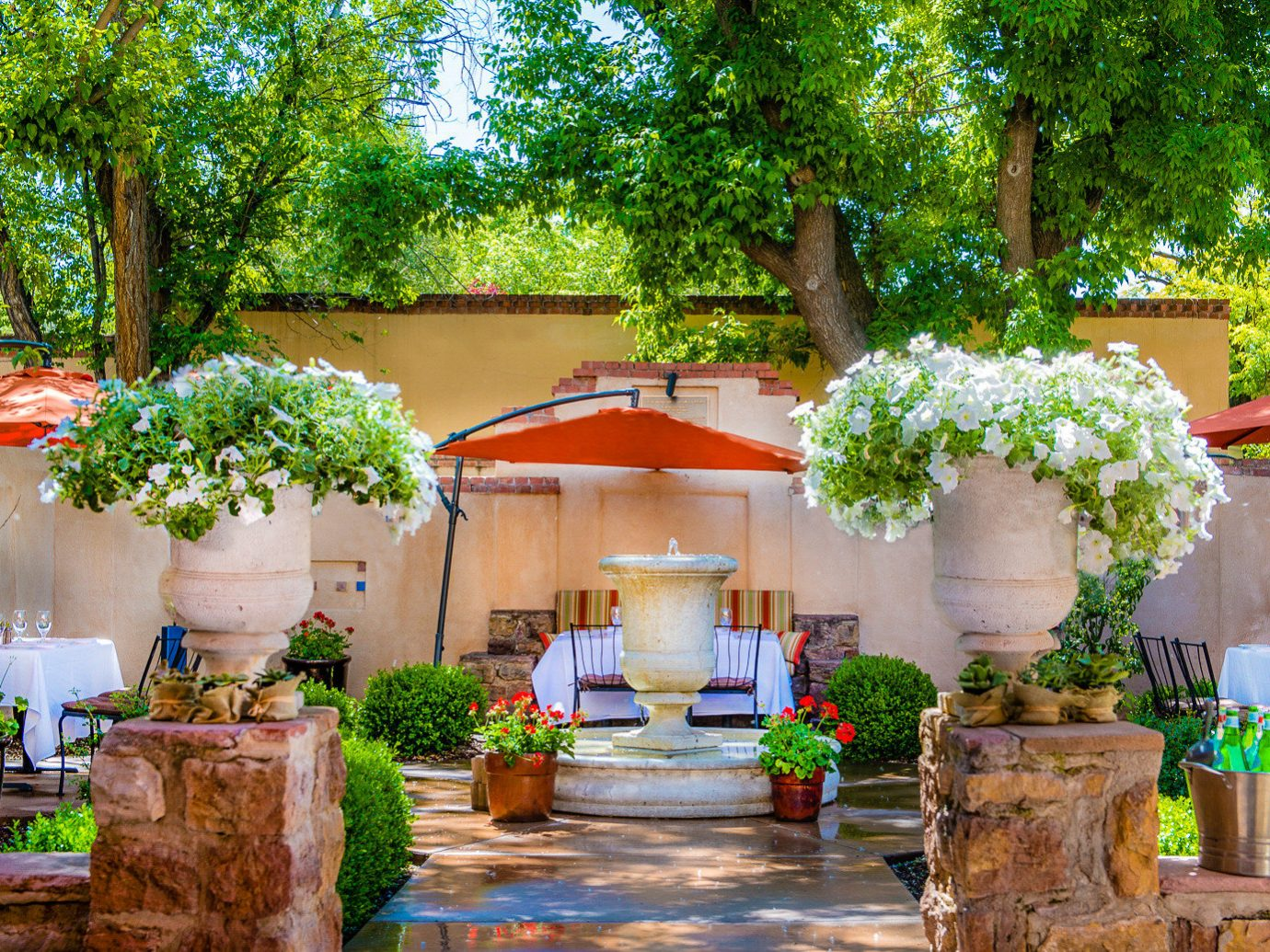 tree outdoor plant flower backyard Garden outdoor structure floristry home Courtyard yard real estate house Patio landscaping hacienda leisure several