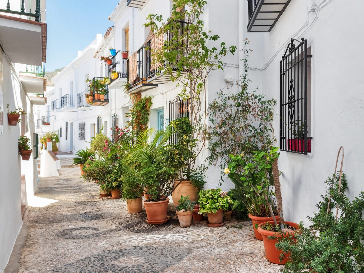 europe Spain Trip Ideas Town property neighbourhood alley flower house street Courtyard home real estate plant facade window apartment tree Balcony road City