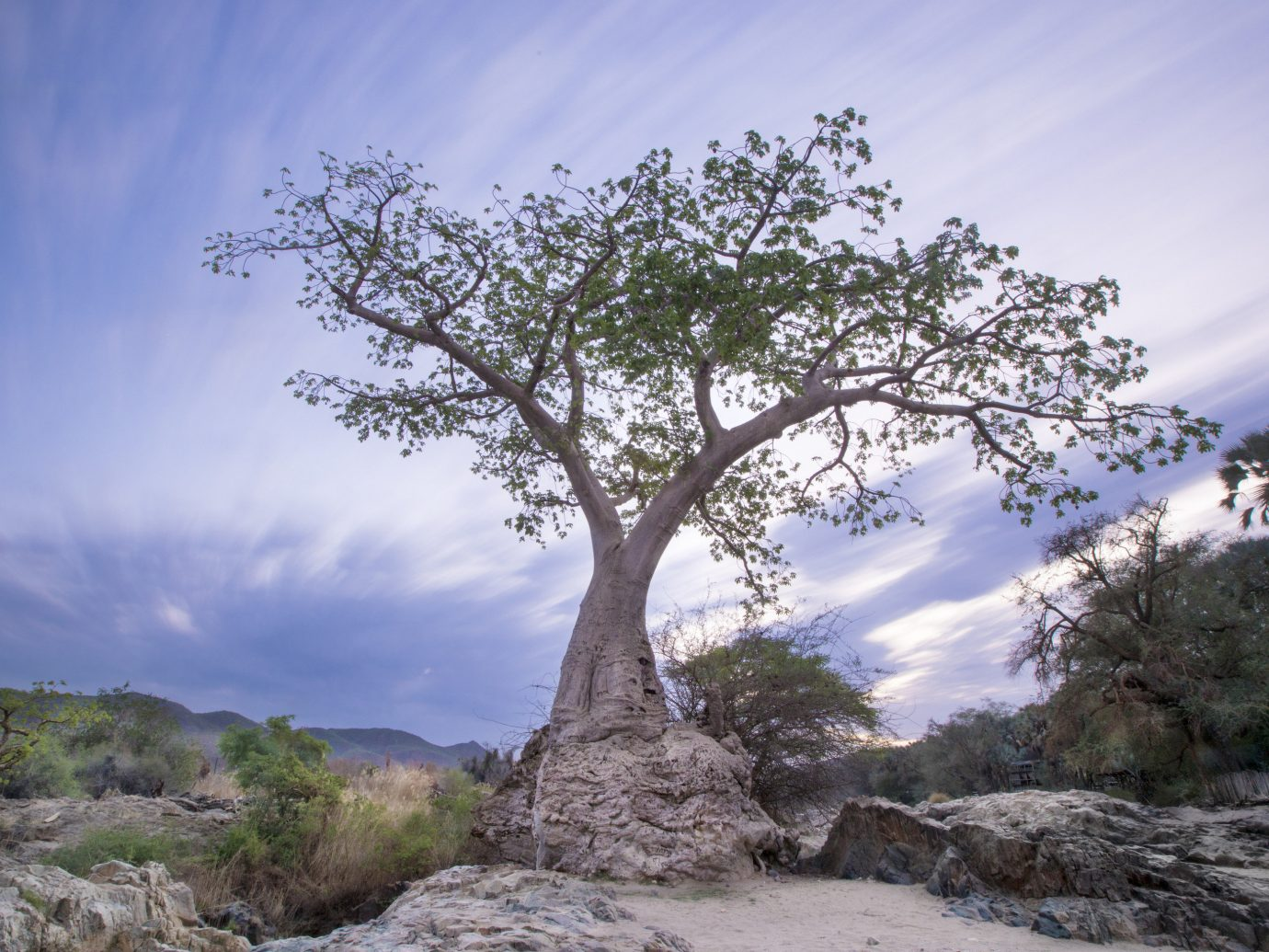 africa Honeymoon Namibia Romance Trip Ideas outdoor sky tree woody plant vegetation plant branch rock cloud mountain national park landscape shrubland formation hillside