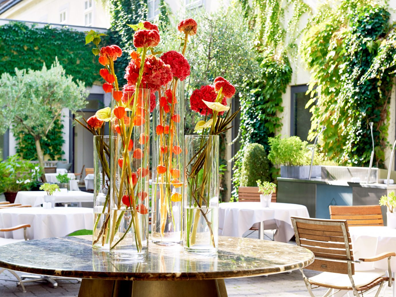 Austria City Courtyard Design Dining Drink Eat europe Garden Hip Hotels Modern Outdoors Vienna tree flower arranging flower floristry meal floral design interior design centrepiece restaurant backyard set dining table table