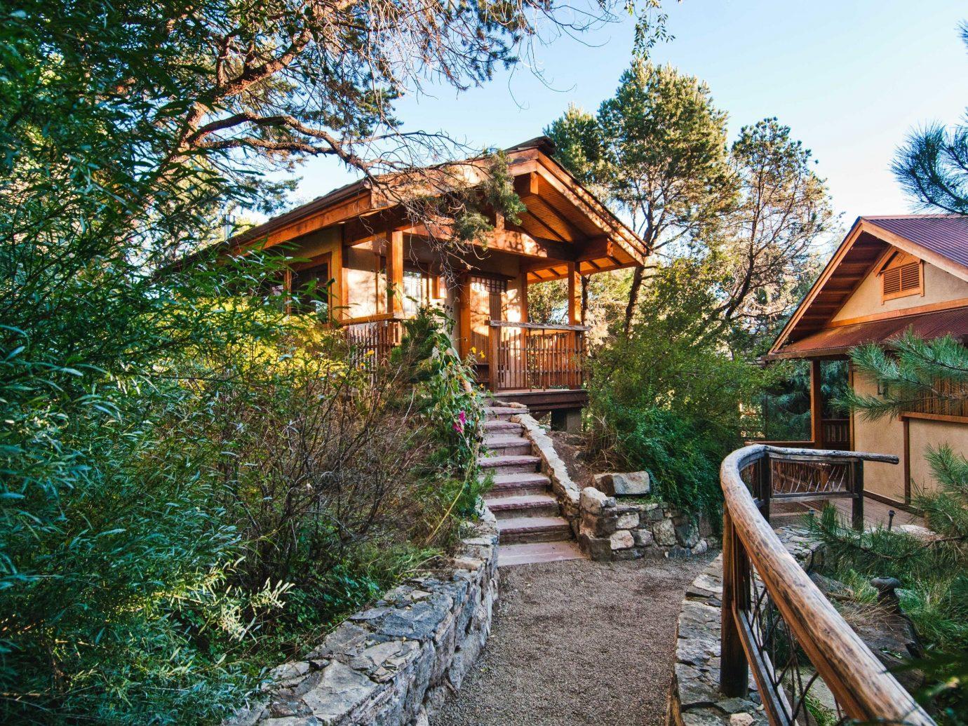 property tree cottage house home log cabin real estate plant path outdoor structure hut landscape Resort estate Jungle