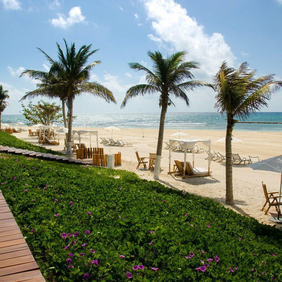 All-inclusive All-Inclusive Resorts Mexico Riviera Maya, Mexico Resort palm tree arecales property tree sky Sea Beach walkway tropics leisure plant Villa boardwalk