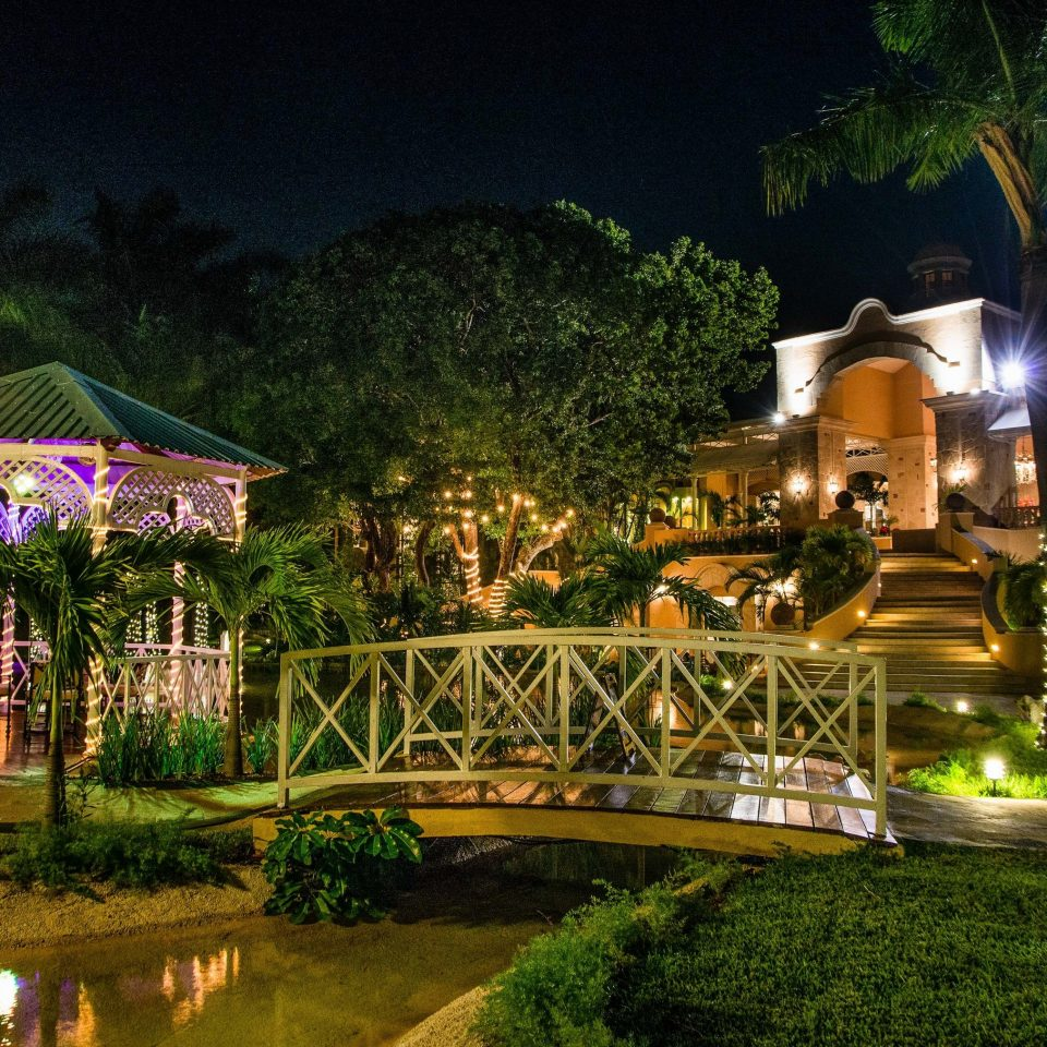 Nature water night Resort plant lighting landscape lighting arecales palm tree home leisure tree landscape evening water feature cottage landscaping house Villa backyard hacienda