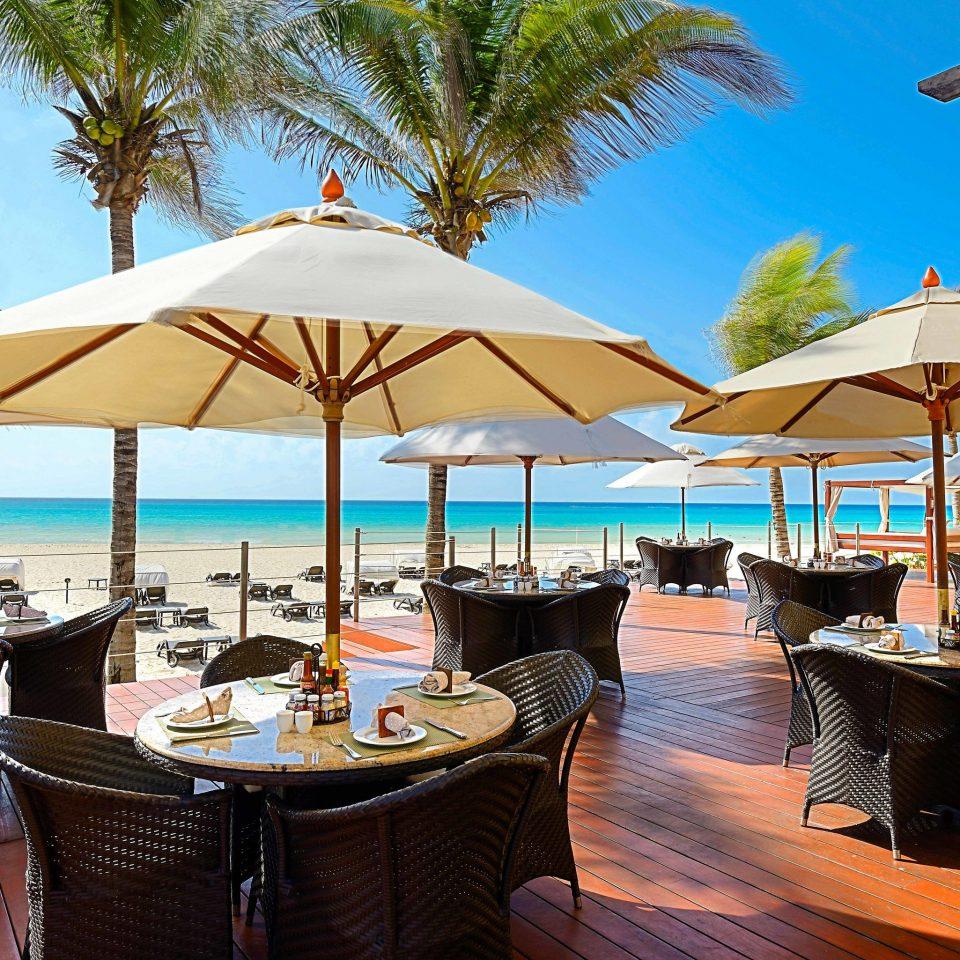 Resort restaurant leisure swimming pool palm tree arecales