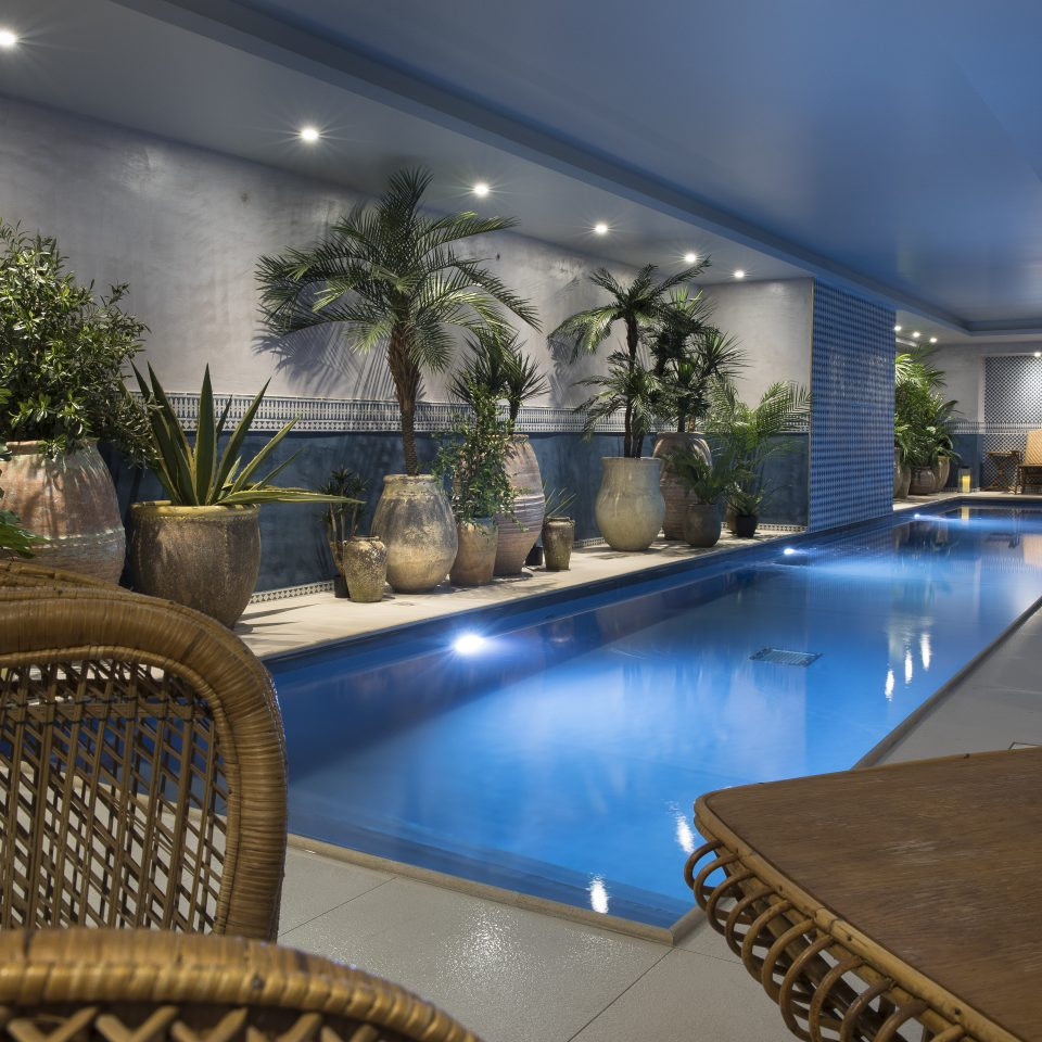 Narrow indoor pool with potted plants, Hôtel Monte Cristo