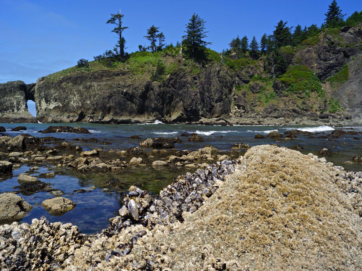 Northwest Washington's Olympic Coast.