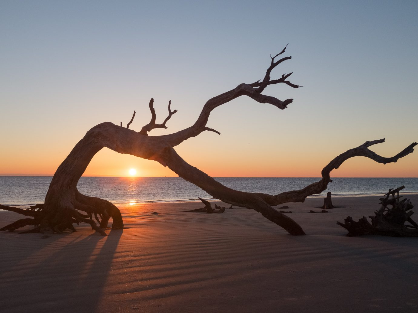 Sunrise on Driftwood Beach in Jekyll Island, Georgia