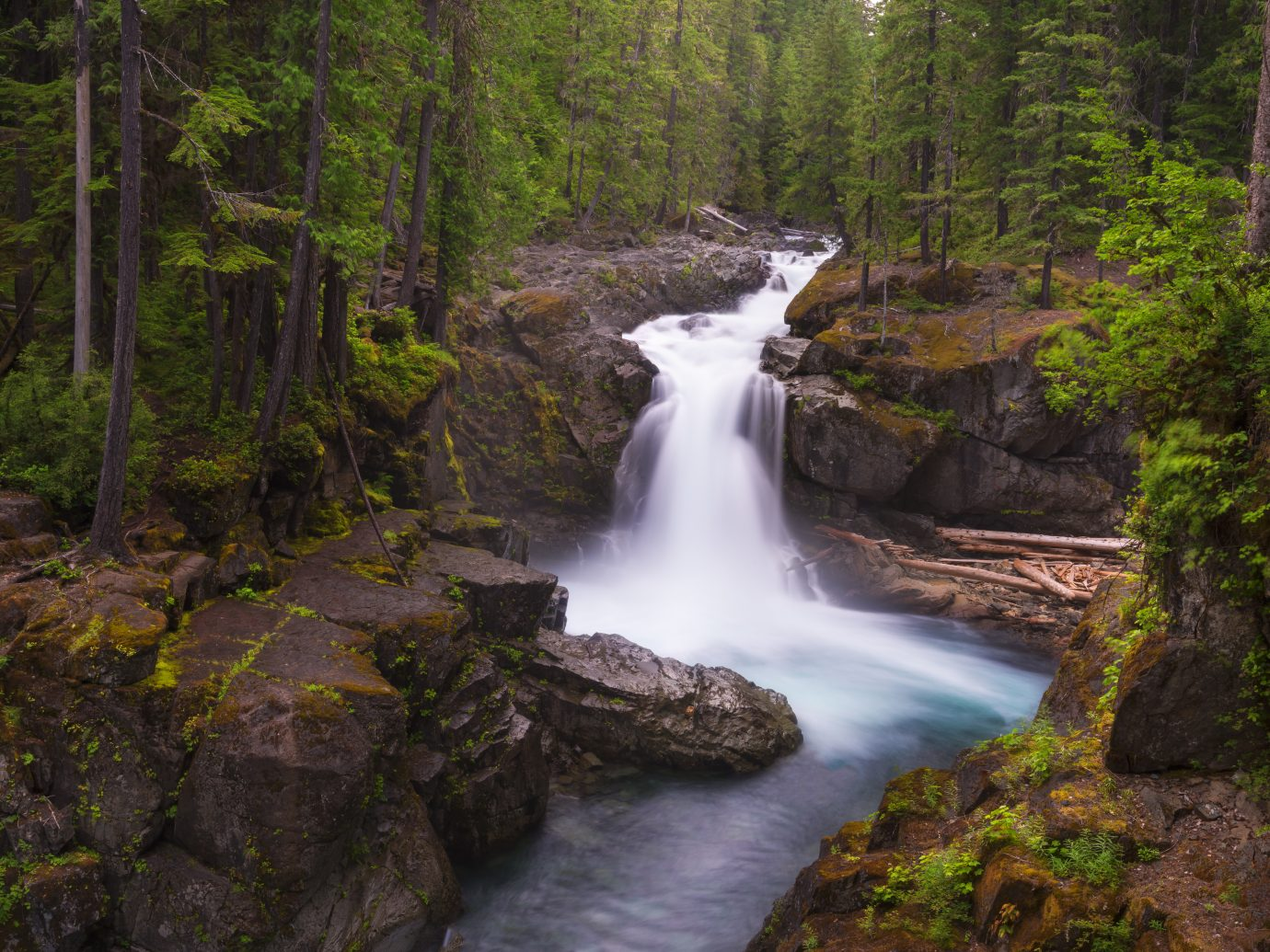 Silver Falls trail is one of the most popular and beautiful trails in Mt Rainier NP.Silver Falls trail is one of the most popular and beautiful trails in Mt Rainier NP.