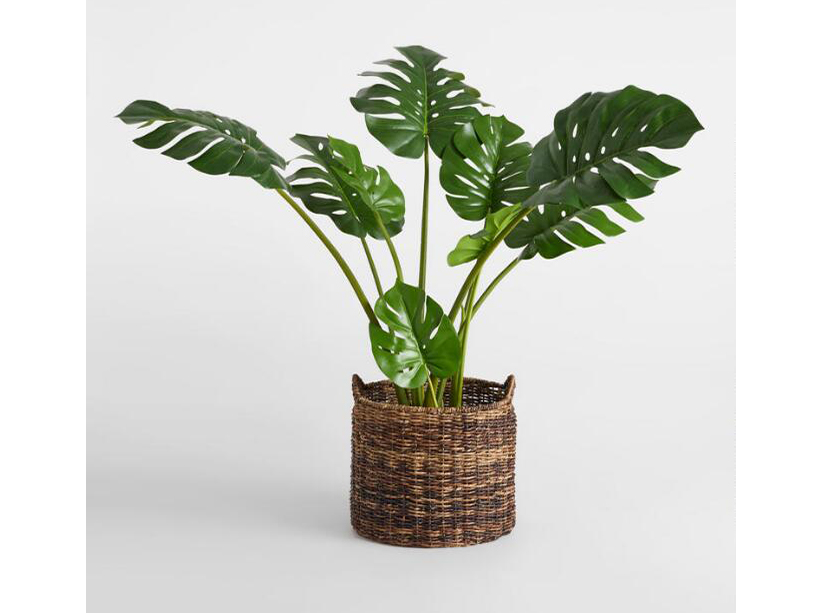 World Market Faux Monstera Plant