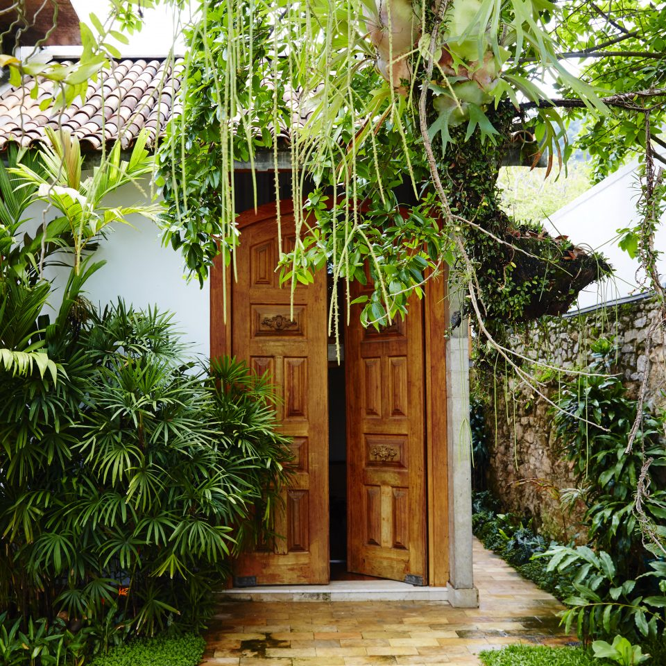 Lush greenery covering a large wooden door entrance