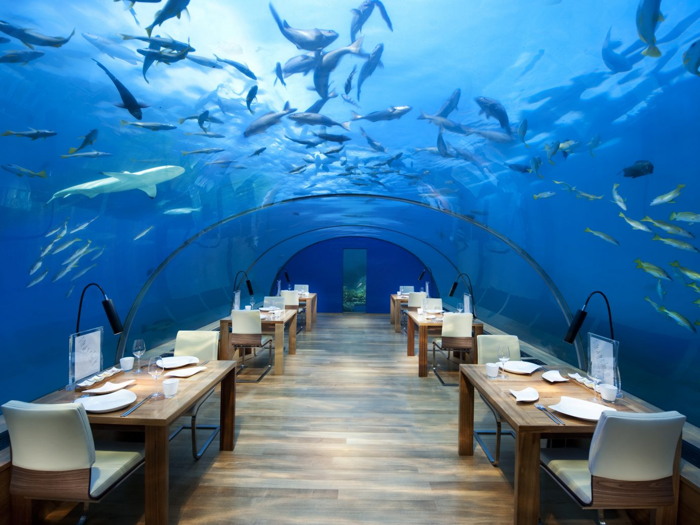 Ithaa Underwater restaurant at the Conrad Maldives