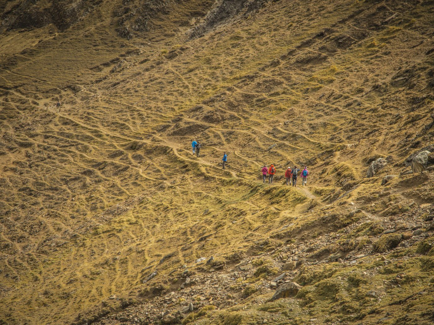 People hiking on Inca Trail