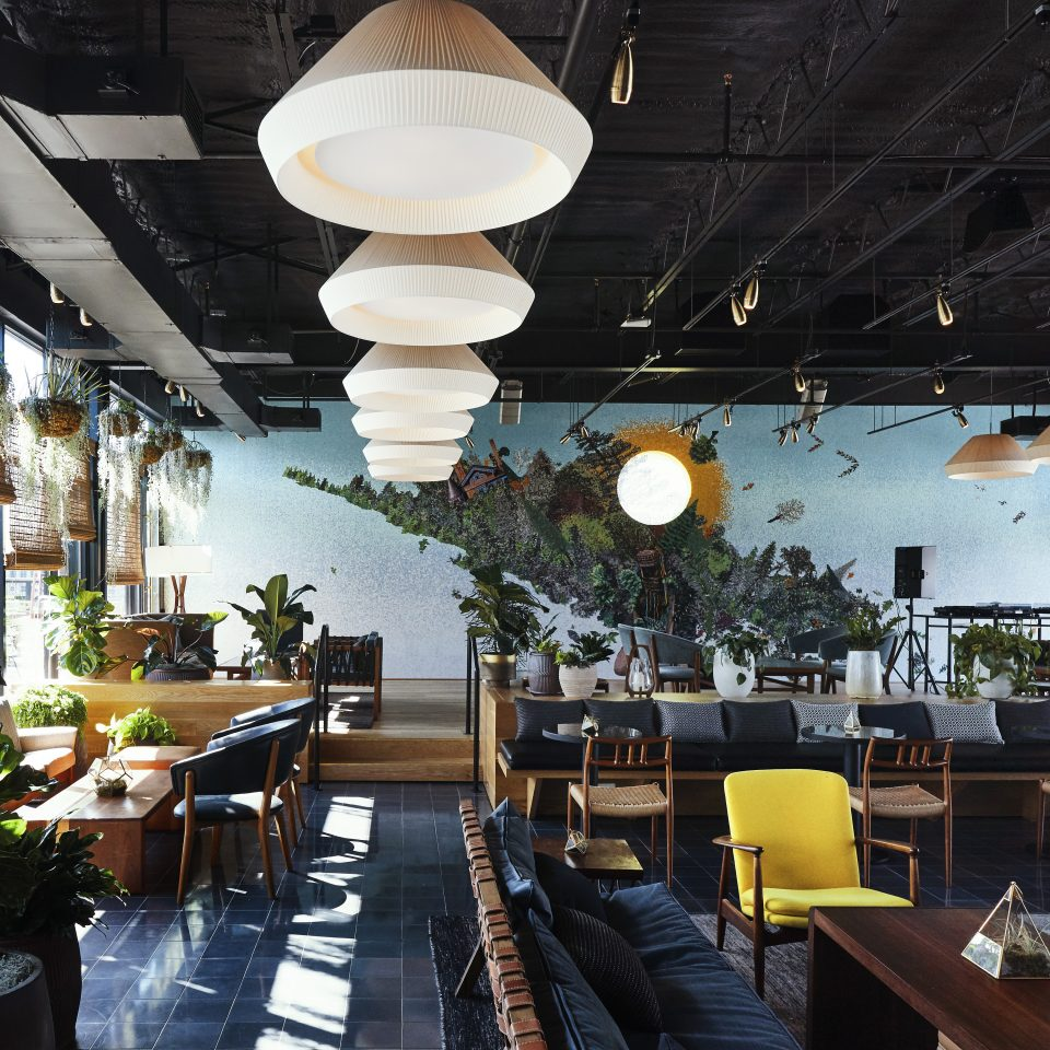 Large room with tons of house plants and seating areas as the sun shines in