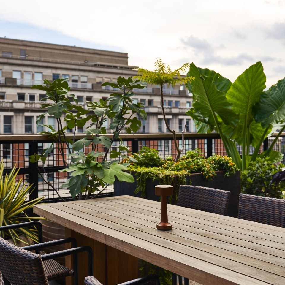 Rooftop seating area with wicker chairs and wooden table with plants shrouded around