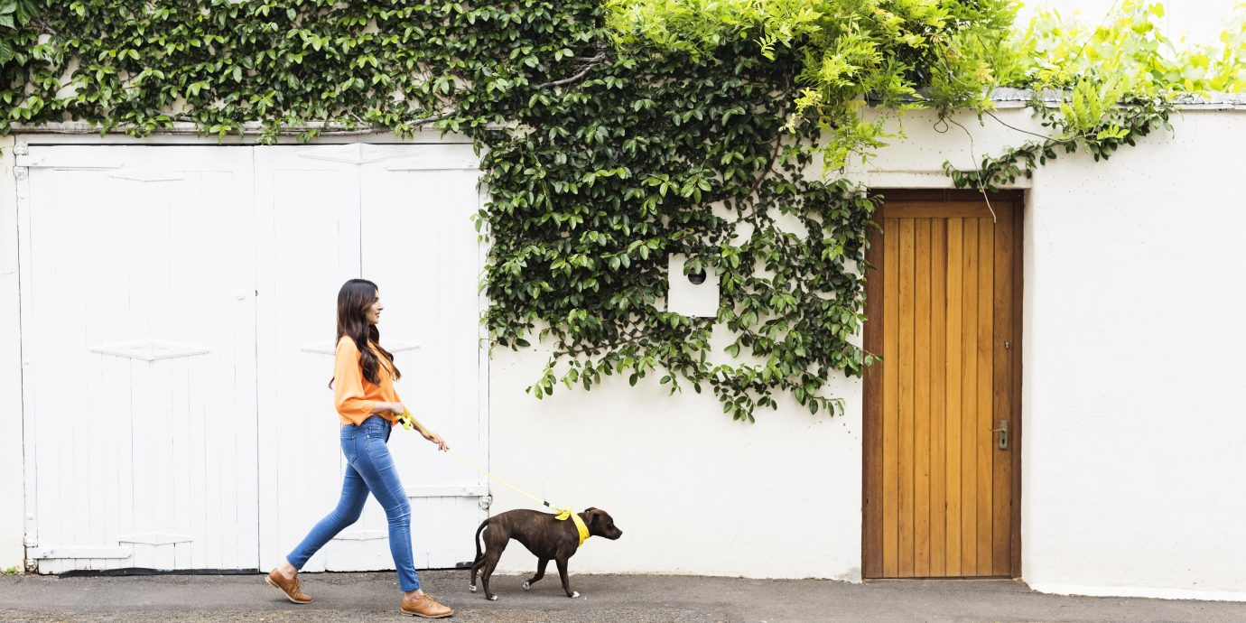 Woman in long pants walking a dog in LA, non-cropped pants for winter