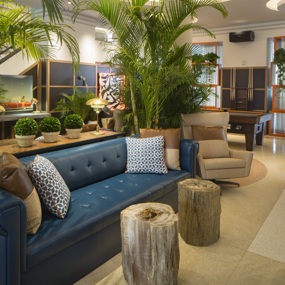 Leather blue couch with house plants in the lobby