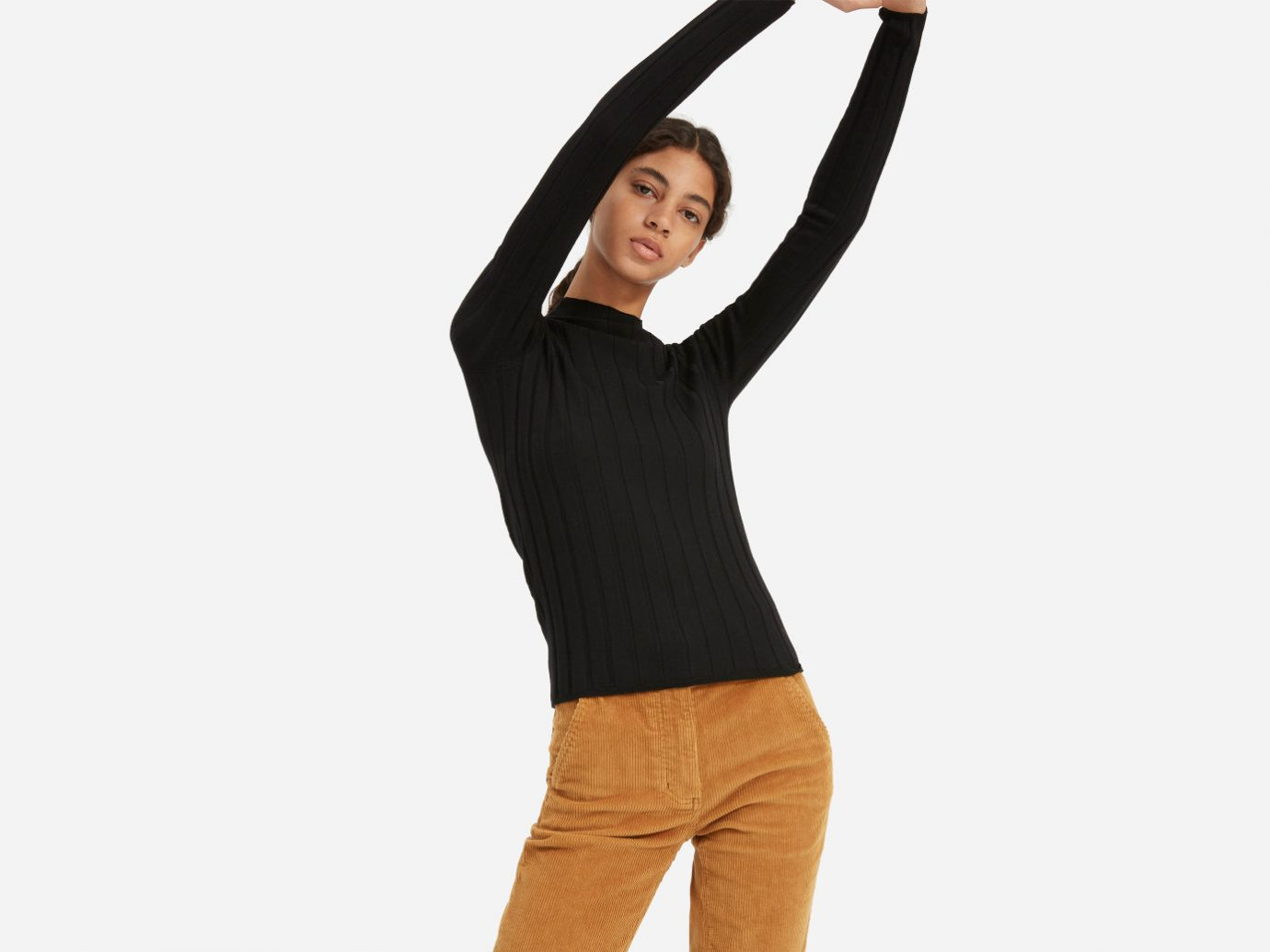 Everlane The Luxe Wool Rib Mockneck
