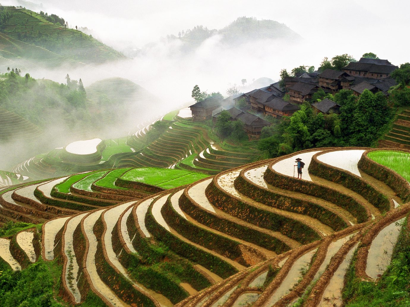 Rice Terraces and farming village in Longsheng, Guangxi province, China.