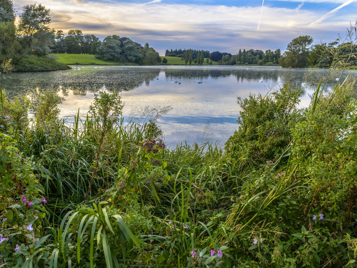 The lake in Blenheim Palace