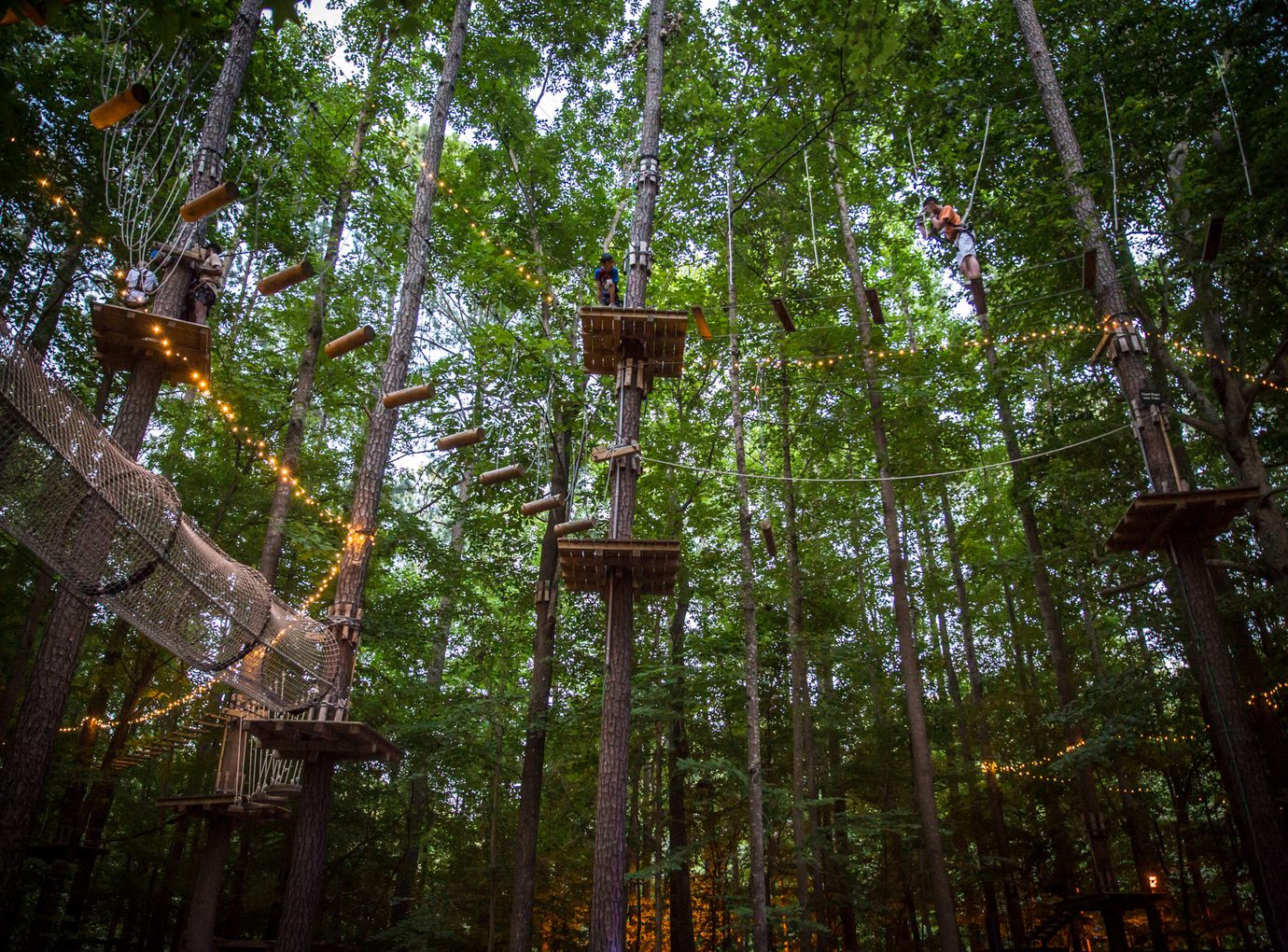 obstacle course in forest