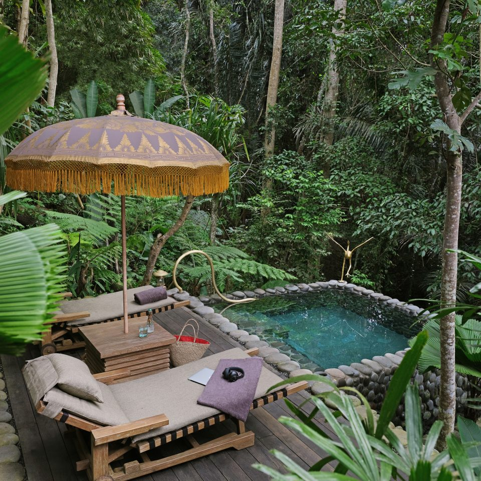 private deck and small pool in middle of jungle