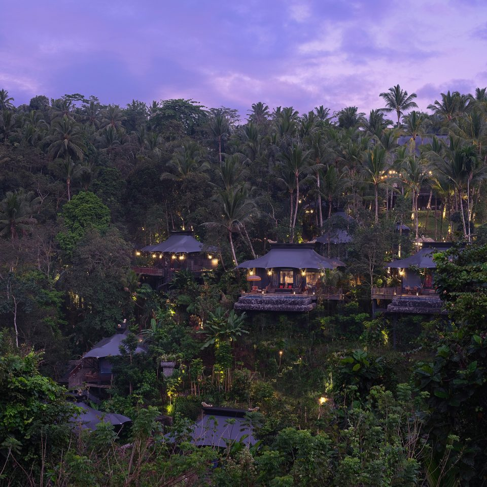 overview of Capella Ubud at dusk