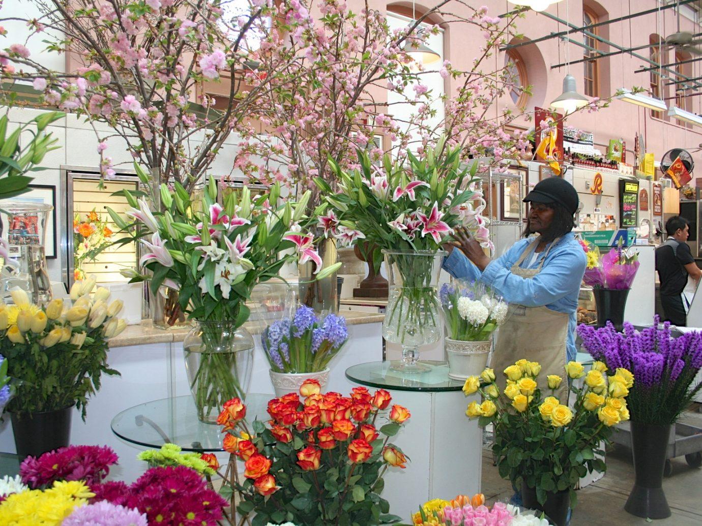 Blue Iris Flowers at Eastern Market