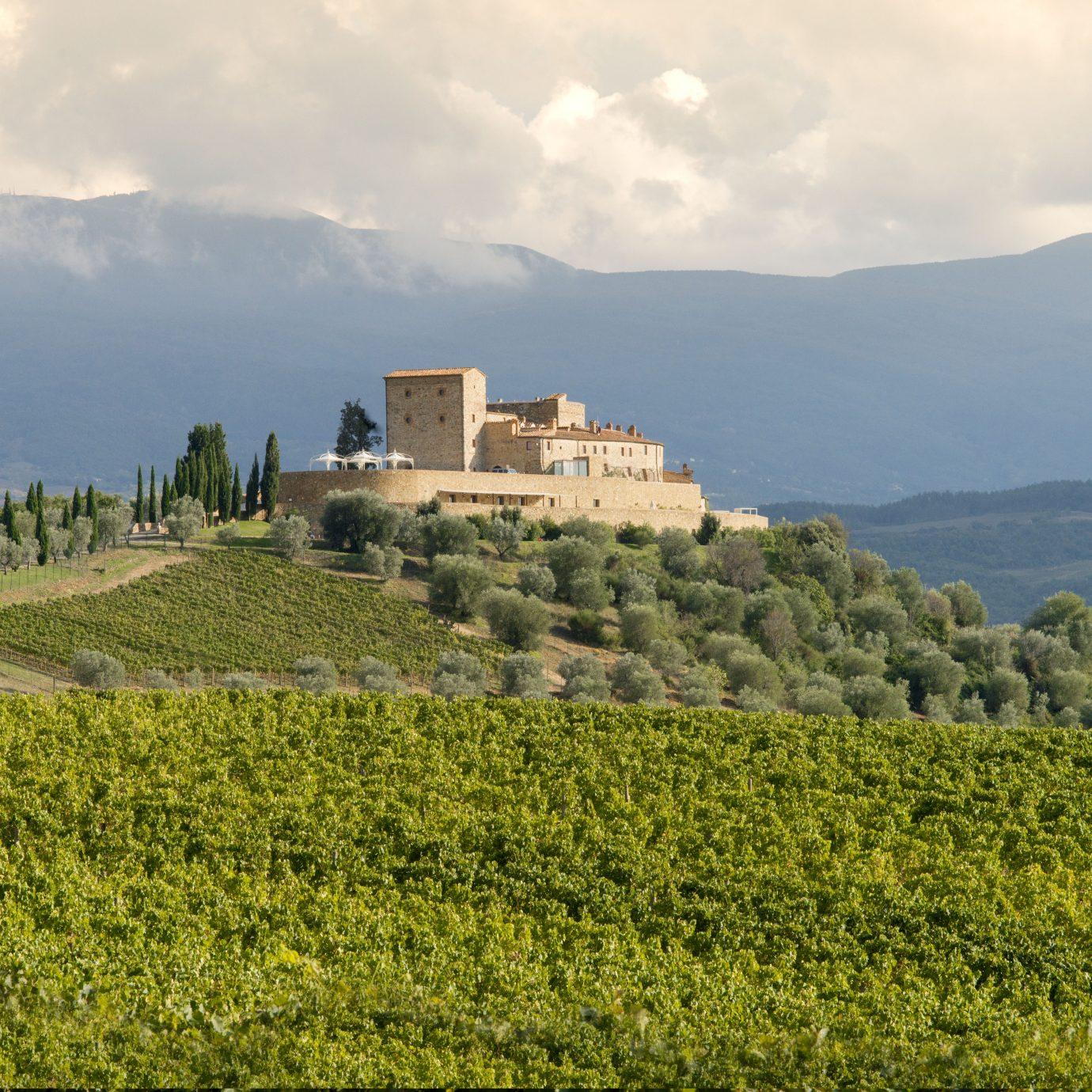 Aerial view of Castello di Velona