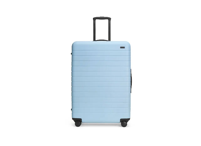Away The Large 29-Inch Suitcase