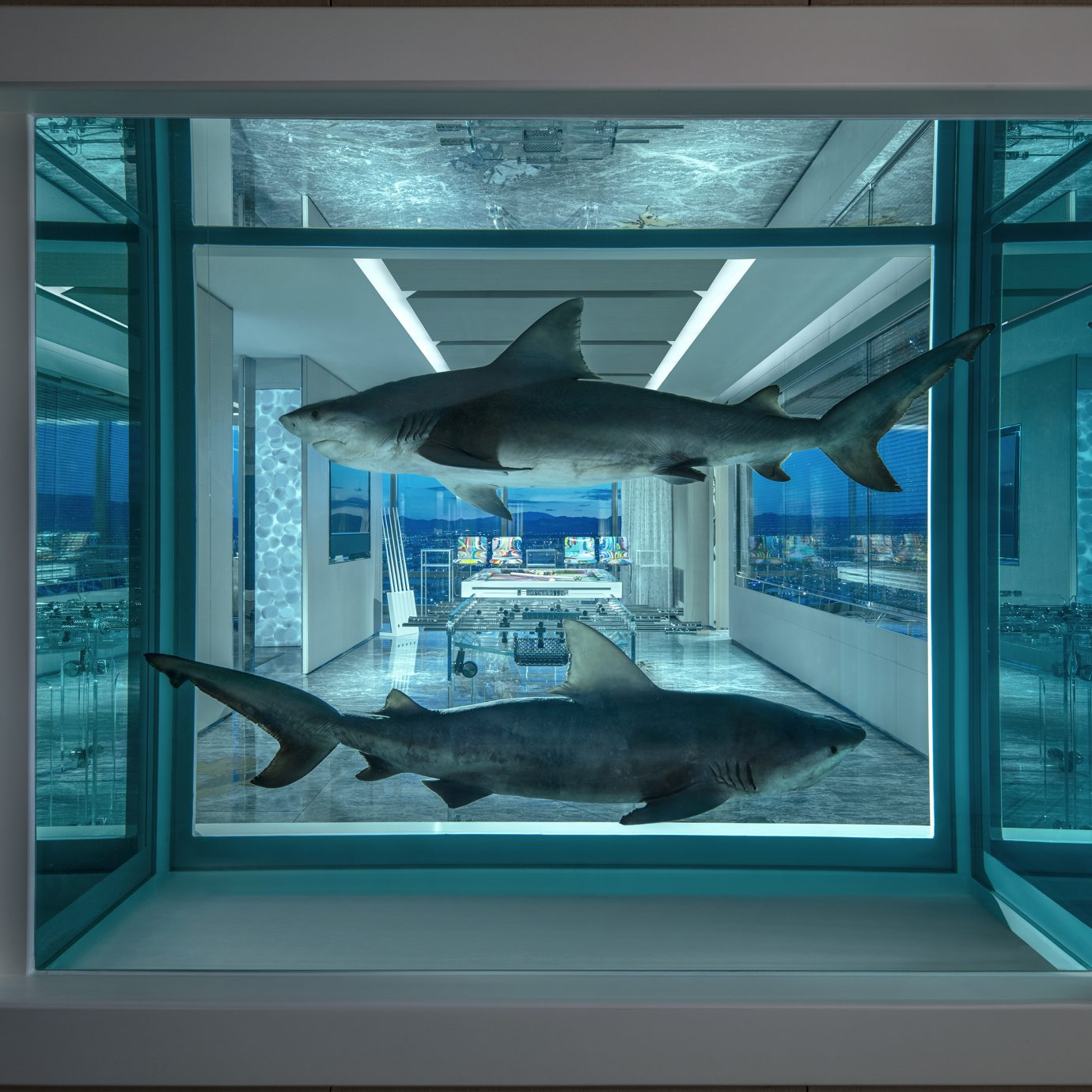 sharks installation at the Damien Hirst designed Empathy Suite, Palms Casino Resort Las Vegas