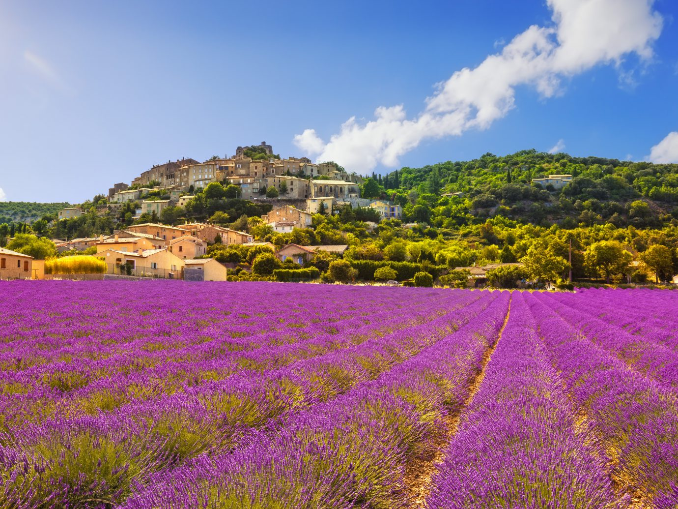 Simiane la Rotonde village and lavender panorama. Provence, France, Europe