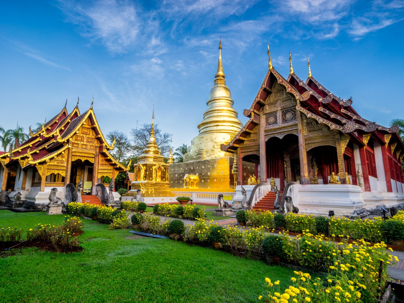 Sunrise scence of Wat Phra Singh temple. in the old city center of Chiang Mai,Thailand.