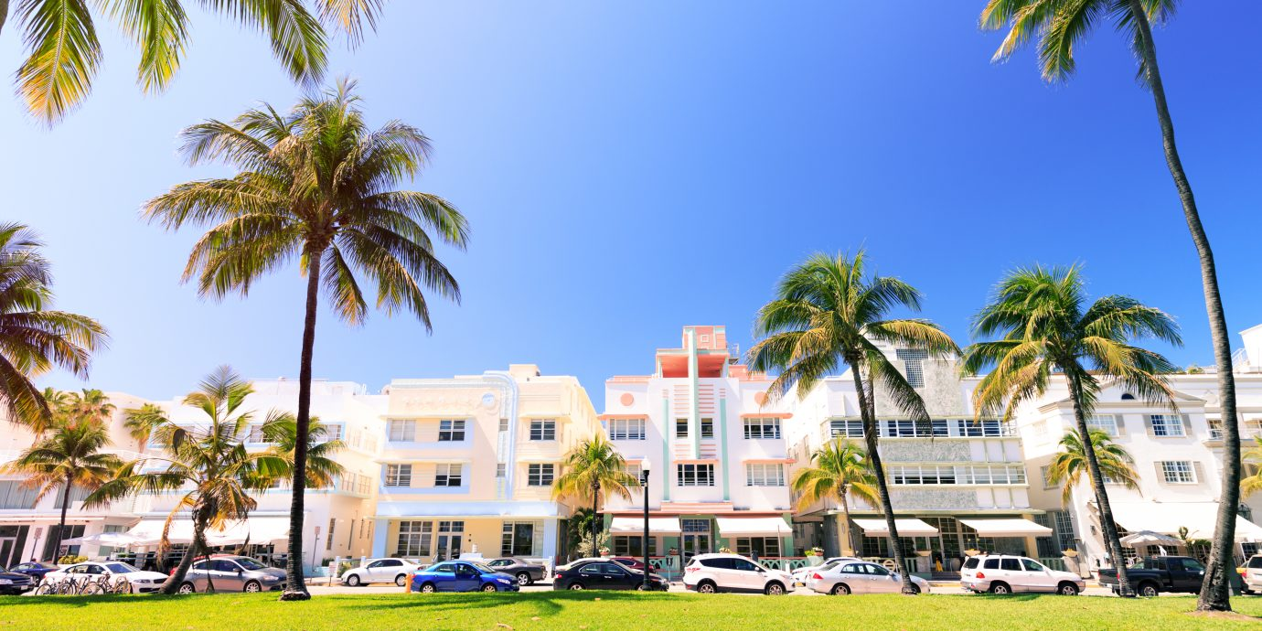 Art Deco buildings and palm trees on Ocean Drive in Miami Beach