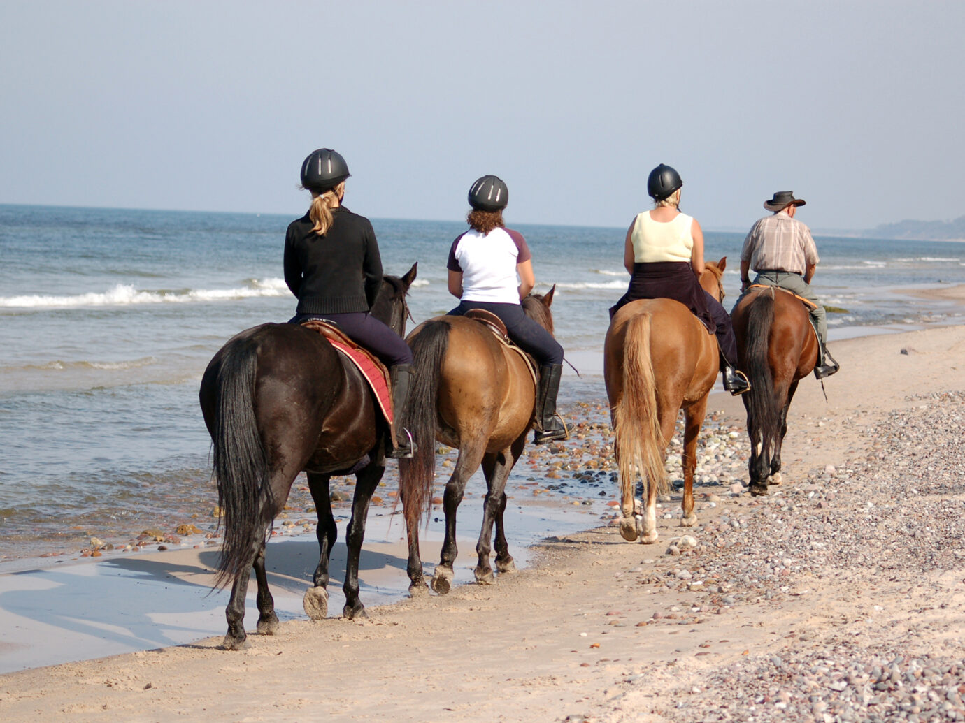 Beach horse-riding in summertime