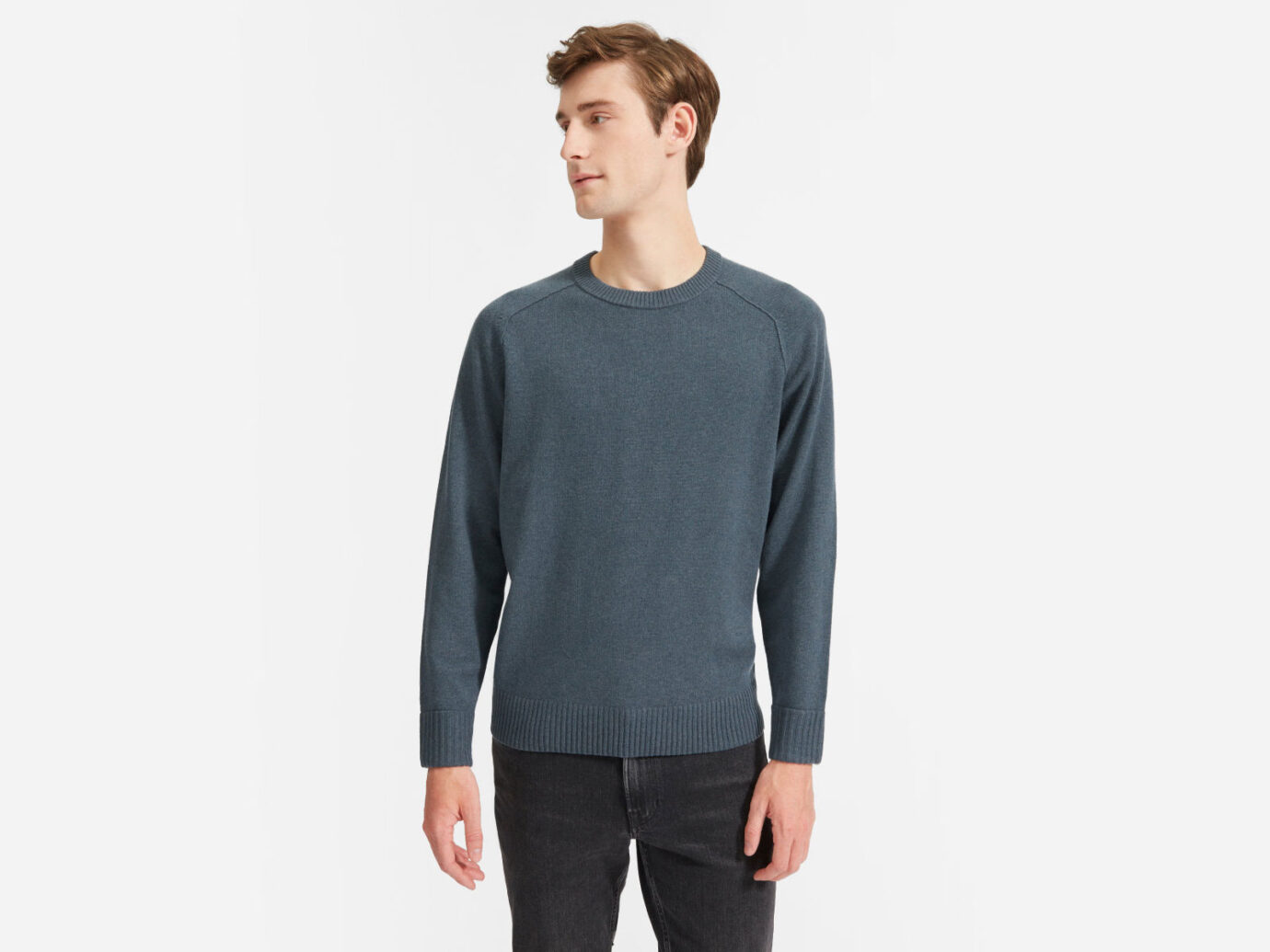 Everlane The ReCashmere Crew