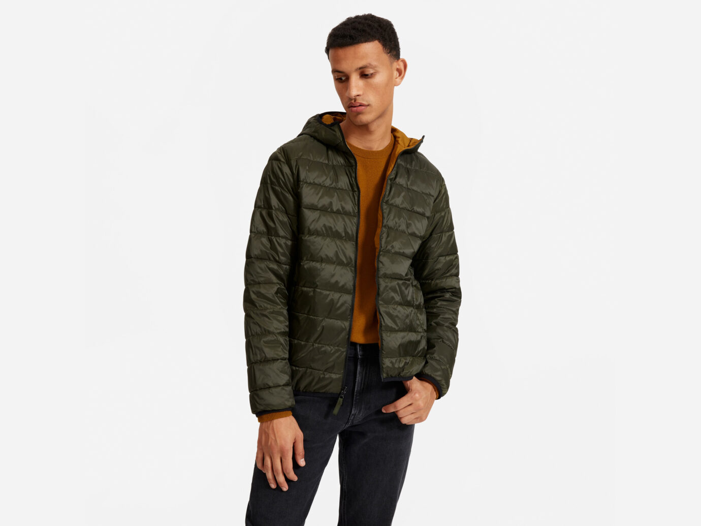 Everlane The ReNew Lightweight Hooded Puffer
